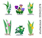 spring flowers icons set... | Shutterstock .eps vector #555421378