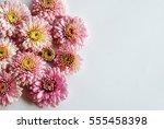 beautiful flowers background... | Shutterstock . vector #555458398