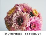 beautiful flowers background... | Shutterstock . vector #555458794