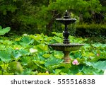 Fountain In A Peaceful Lotus...