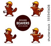 set of beaver animal character... | Shutterstock .eps vector #555545608