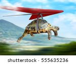 Stock photo funny turtle flying on hang glider 555635236