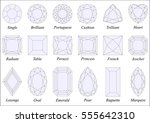 vector illustration set of... | Shutterstock .eps vector #555642310