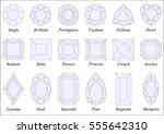 vector illustration set of... | Shutterstock .eps vector #555642310