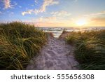 path to a summer sunset beach.... | Shutterstock . vector #555656308