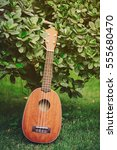Small photo of Classic wooden small guitar ukulele with green tree and grass background, musical hobby, self development, entertaining