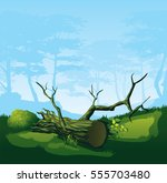 a high quality illustration of... | Shutterstock .eps vector #555703480