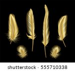set of gold  feather. vector... | Shutterstock .eps vector #555710338