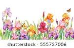 Field Of Iris Flowers....