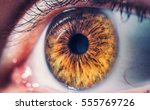 macro pupil retina human colse... | Shutterstock . vector #555769726