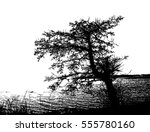 realistic tree silhouette on... | Shutterstock .eps vector #555780160