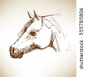 Horse. Hand Drawn Vector...