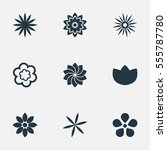 set of 9 simple blossom icons....