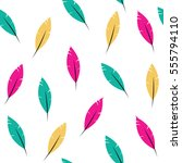 seamless pattern   feathers | Shutterstock .eps vector #555794110