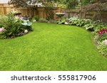 home garden. residential garden ... | Shutterstock . vector #555817906