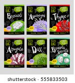 set of colorful labels  sketch... | Shutterstock .eps vector #555833503