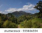 magnificent panorama of ben...   Shutterstock . vector #555836554