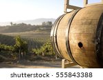 Wine Barrel Vineyard - Fine Art prints