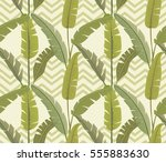 banana leaves. tropical print.... | Shutterstock .eps vector #555883630