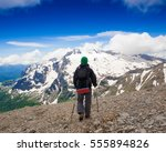 beautiful amazing day summer... | Shutterstock . vector #555894826