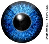 Sharp Attractive Deep Eye...