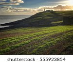 galley head lighthouse on the... | Shutterstock . vector #555923854