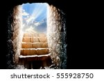 resurrection of jesus christ.... | Shutterstock . vector #555928750