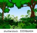 rainforest vector illustration. ... | Shutterstock .eps vector #555986404