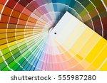 color palette  guide of paint