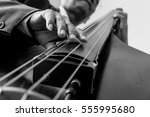 Musician Playing Double Bass.