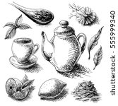 tea collection elements in... | Shutterstock .eps vector #555999340