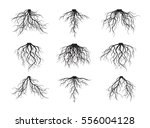 Set Of Black Roots. Vector...