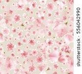 sakura flowers isolated on... | Shutterstock .eps vector #556042990