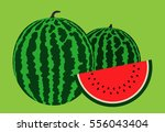 watermelon | Shutterstock .eps vector #556043404