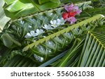 fijian food lovo. lovo  fijian... | Shutterstock . vector #556061038