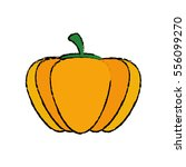 fresh pumpkin vegetable icon... | Shutterstock .eps vector #556099270