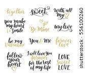 vector set of handwritten... | Shutterstock .eps vector #556100260