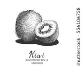 kiwi hand drawn illustration by ... | Shutterstock .eps vector #556106728