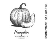 pumpkin hand drawn illustration ... | Shutterstock .eps vector #556106740