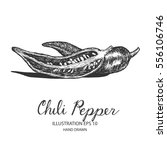 chili pepper hand drawn... | Shutterstock .eps vector #556106746