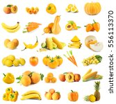 assortment of fresh vegetables... | Shutterstock . vector #556113370