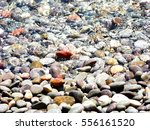 Pebbles On The Sea Beach
