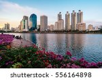 cityscape photography of... | Shutterstock . vector #556164898