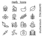 herb icon set in thin line style | Shutterstock .eps vector #556186690