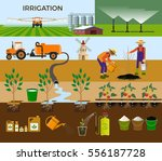 set of vector illustrations for ... | Shutterstock .eps vector #556187728