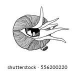 hand drawn art work. actual... | Shutterstock .eps vector #556200220