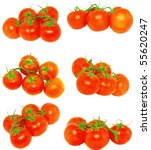 Collection (set) of lush tomatoes with  green branch.Isolated - stock photo