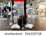 softbank pepper robots which... | Shutterstock . vector #556220728