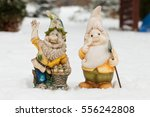 Couple Of Garden Dwarves In...