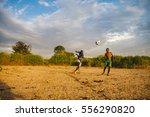kenya  rusinga  utajo   october ... | Shutterstock . vector #556290820